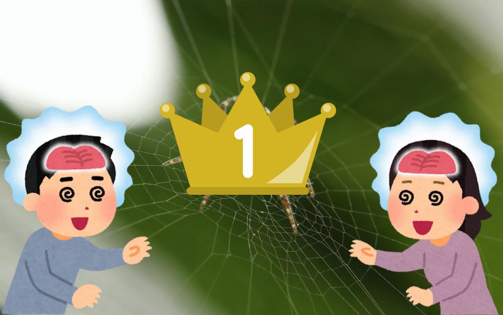 プログラム言語人気ランキングの罠に注意【アンケートは信用するな!!】