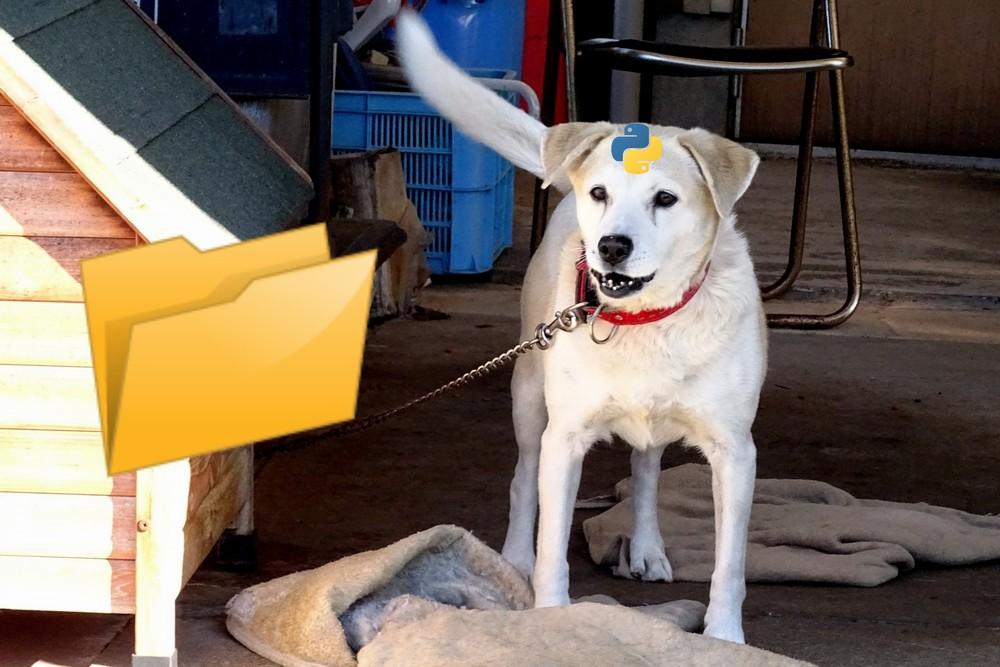 【Python】ファイル・フォルダ更新を監視するWatchdogのインストール