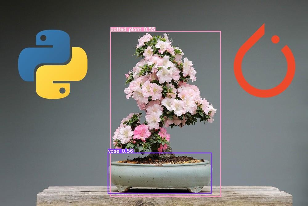 YOLOv5のインストール【Pythonで物体検出】